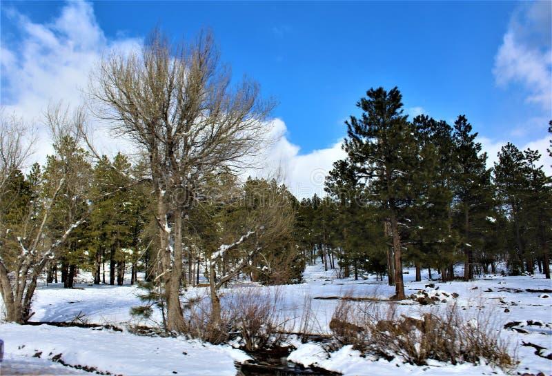Paysage de paysage, canyon du comté de Maricopa, Oak Creek, Arizona, Etats-Unis photos stock