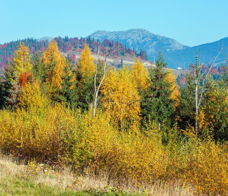 Paysage de Carpathiens d'automne de matin photo stock
