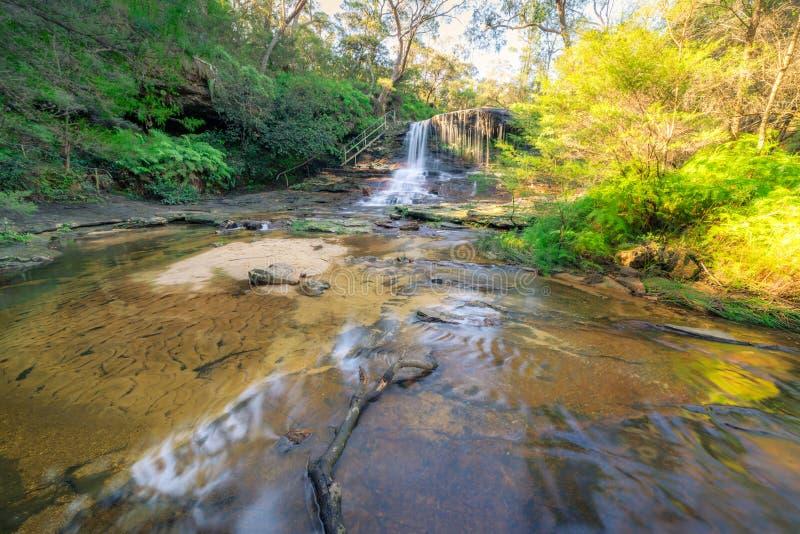 foto de Paysage D'automne D'arbre Rouge Lumineux Photo stock - Image du ...