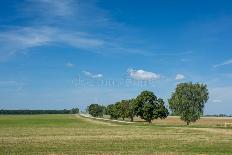 Paysage de champ avec la route photo stock
