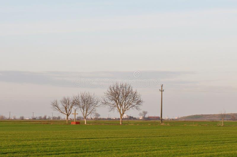 Paysage de champ de blé images stock