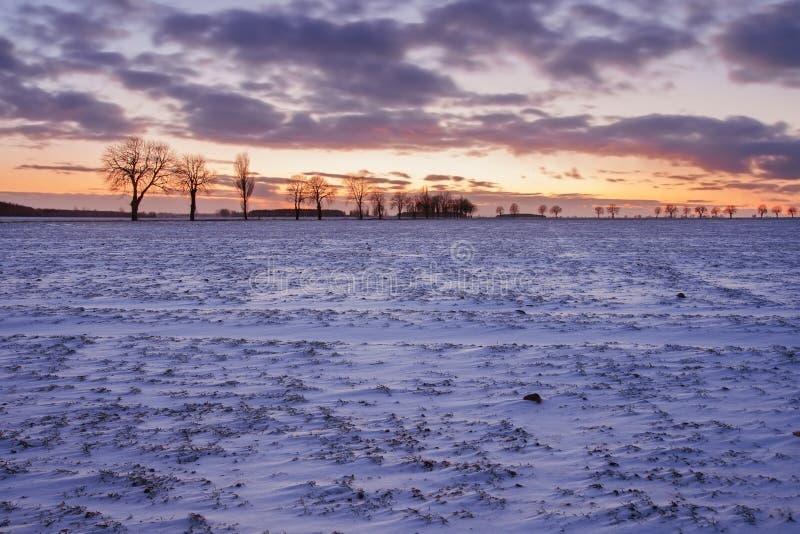 Paysage de champ d'hiver au coucher du soleil photo stock