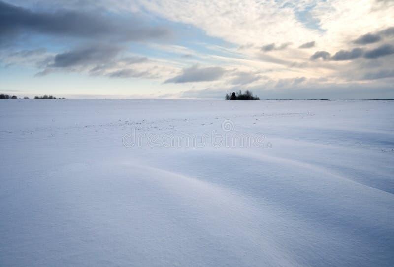 Paysage de champ d'hiver au coucher du soleil photos libres de droits