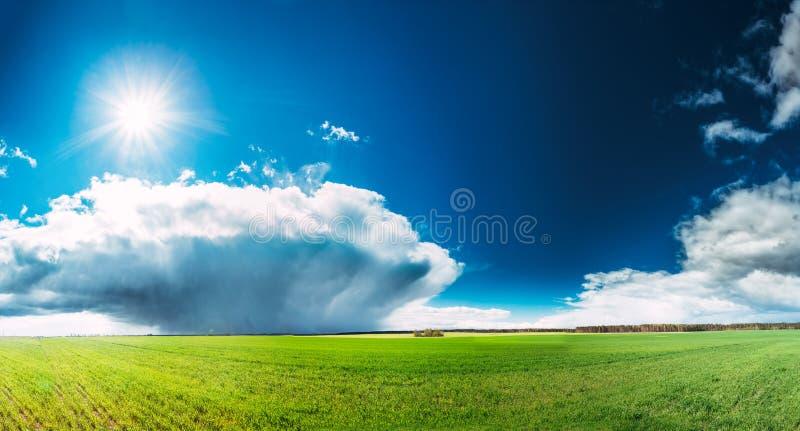 Paysage de champ ou de pré avec l'herbe verte sous le ciel bleu de ressort scénique avec les nuages pelucheux blancs et le Sun br photos libres de droits
