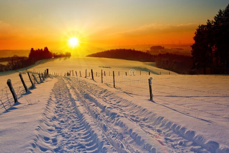 Paysage de coucher du soleil d'hiver avec les arbres et la route de champ photos libres de droits