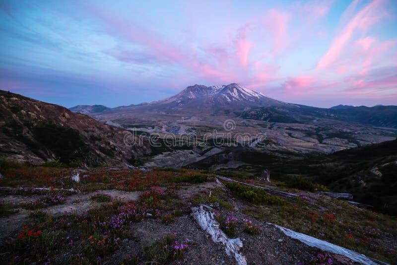 Paysage de coucher du soleil du Mont Saint Helens avec des Wildflowers photographie stock libre de droits
