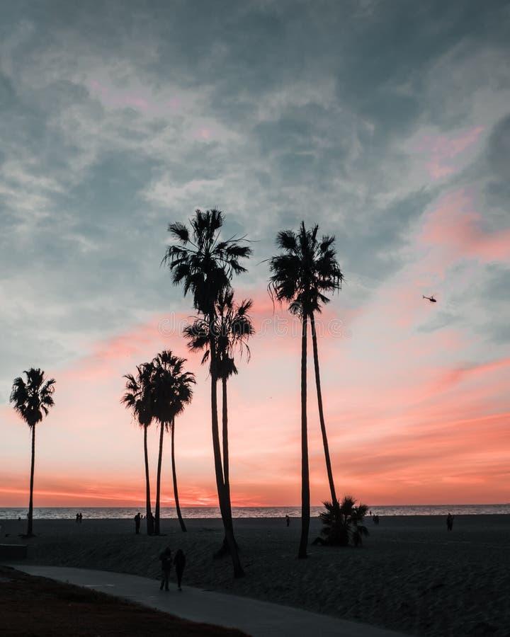 Paysage de coucher du soleil de la Californie de plage de Venise photographie stock