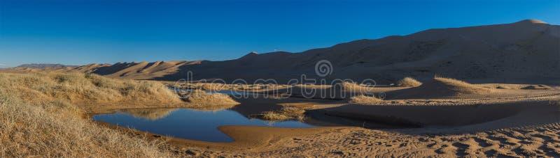 Paysage de désert avec peu d'oasis images libres de droits