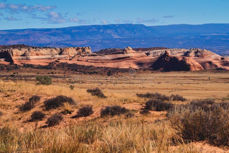 Paysage de désert de Cat District jaune en Utah photo libre de droits