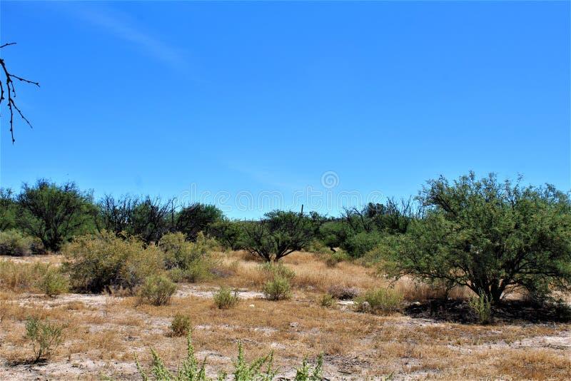 Paysage de paysage de désert situé dans le comté de Cochise, St David, Arizona photos libres de droits