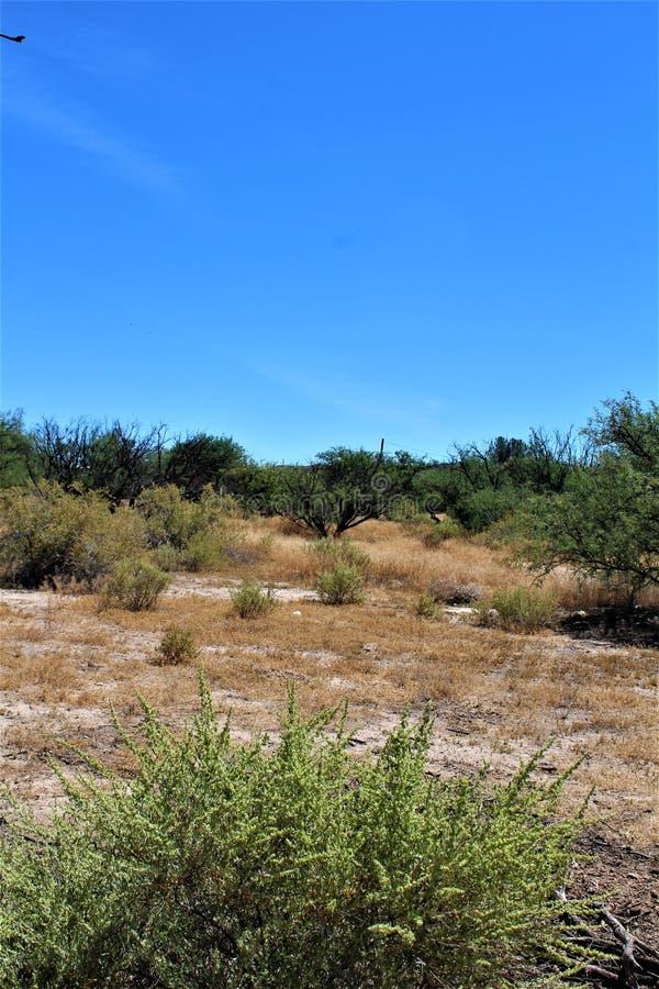 Paysage de paysage de désert situé dans le comté de Cochise, St David, Arizona image libre de droits