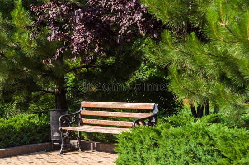 paysage de d?but de l'?t?, vieux parc, bancs, arbres, buissons, herbe verte, feuilles vert clair images stock