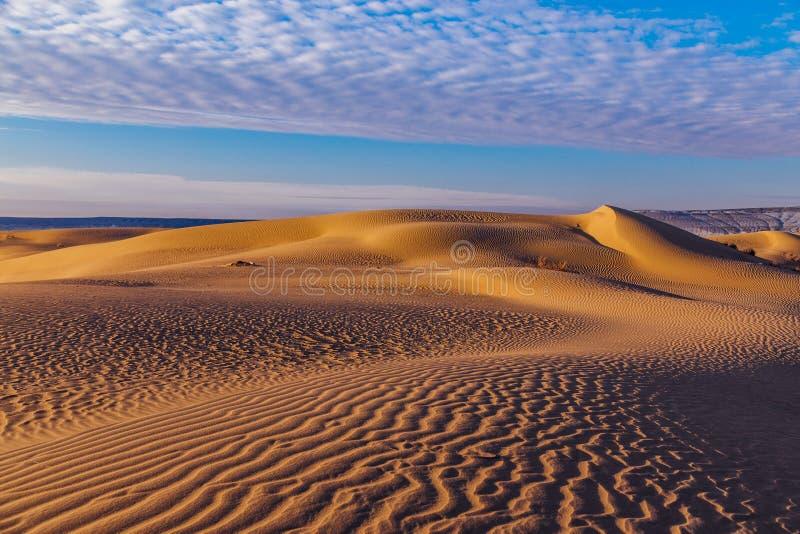 Paysage de d?sert de dunes de sable photos libres de droits