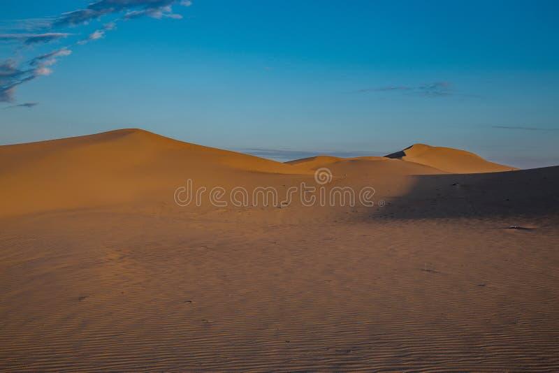 Paysage de d?sert de dunes de sable images libres de droits