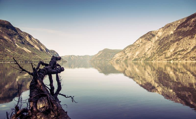Paysage de fjord de Sognefjord en Norvège photographie stock