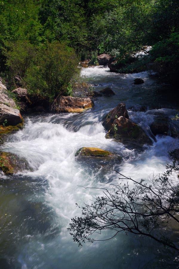 Paysage de fleuve de gorge photo stock