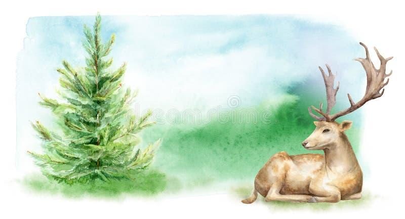 Paysage de forêt d'aquarelle Les cerfs communs sur la pelouse calibre pour des affiches et des cartes postales illustration libre de droits