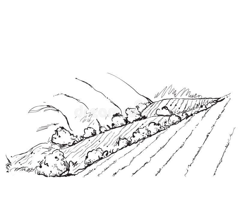 Paysage de griffonnages avec des champs et des arbres illustration stock