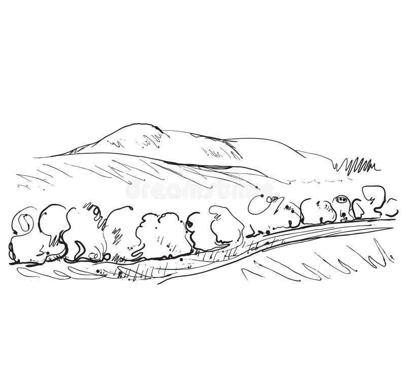 Paysage de griffonnages avec des champs et des arbres illustration de vecteur