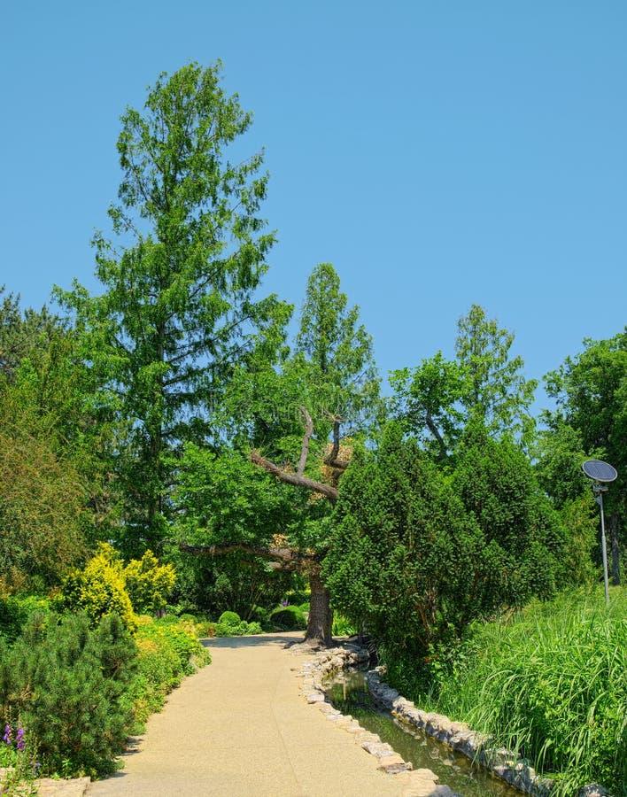 Paysage de jardin japonais de Budapest, Hongrie photos libres de droits