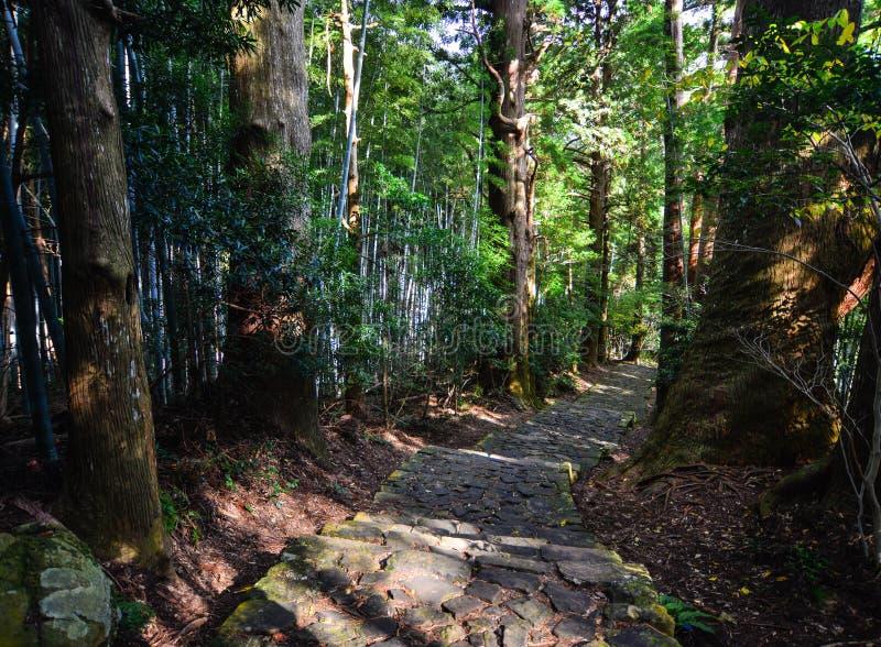 Paysage de Kumano Kodo dans Kansai, Japon photos stock