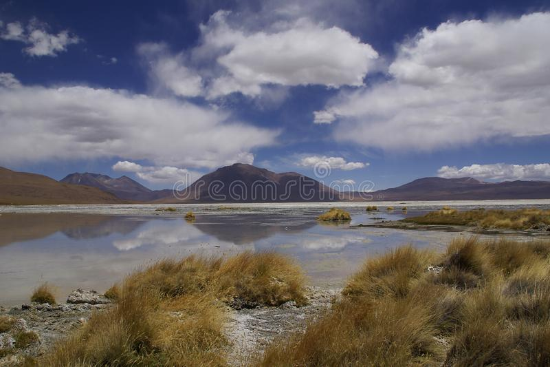 Paysage de l'altiplano de l'uyuni en Bolivie image libre de droits