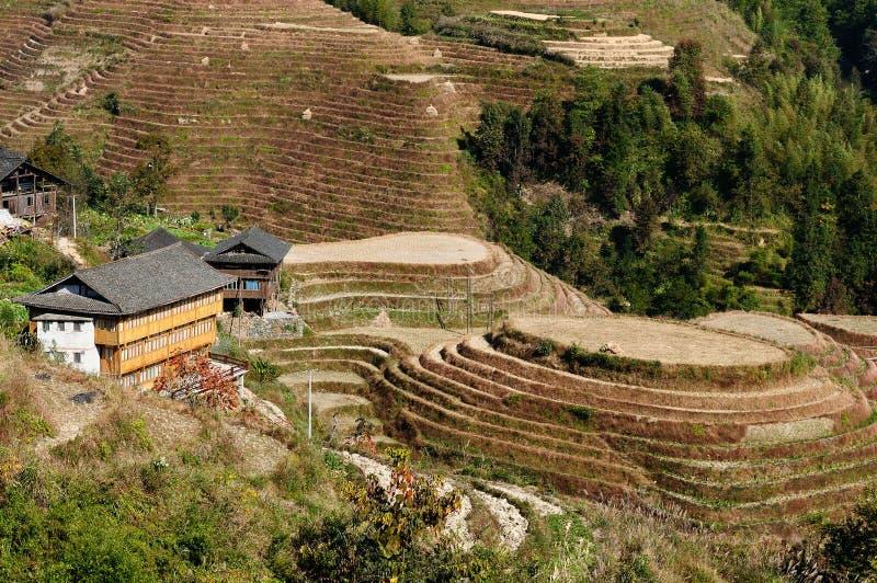 Paysage de la Chine - terrasses de riz d'épine dorsale du ` s de dragon photographie stock libre de droits