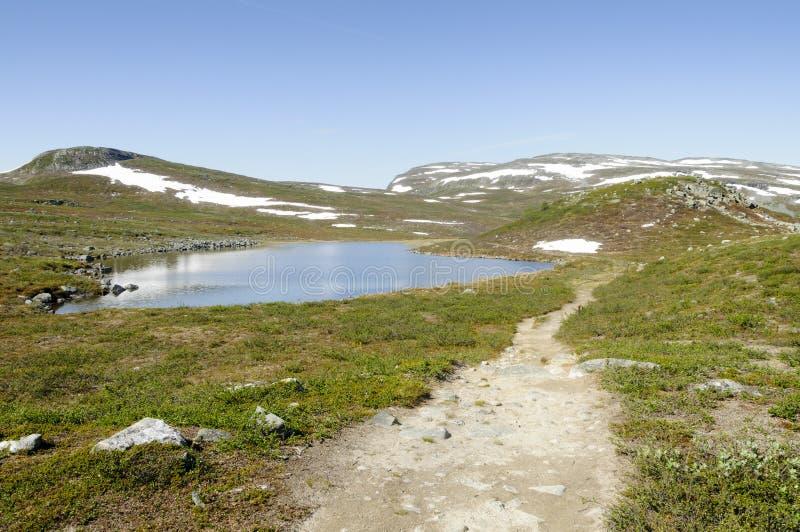 Paysage de la Laponie et chemin de hausse photographie stock libre de droits