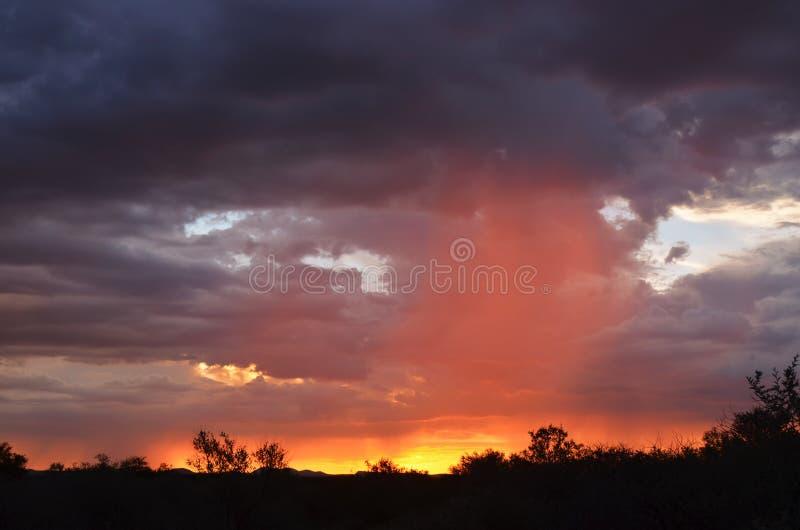 Paysage de la Namibie l'afrique image libre de droits