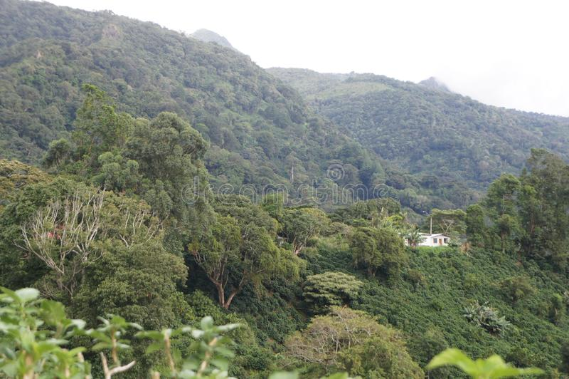 Paysage de la pièce de montagne dans la région Centre du Panama image libre de droits