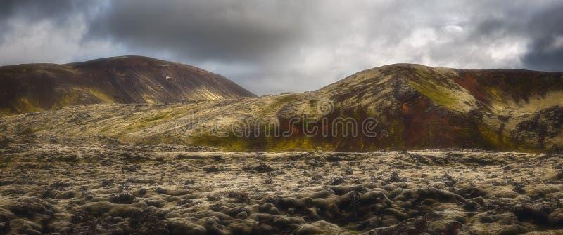 Paysage de la réserve de Reykjanesfolkvangur en Islande photos libres de droits