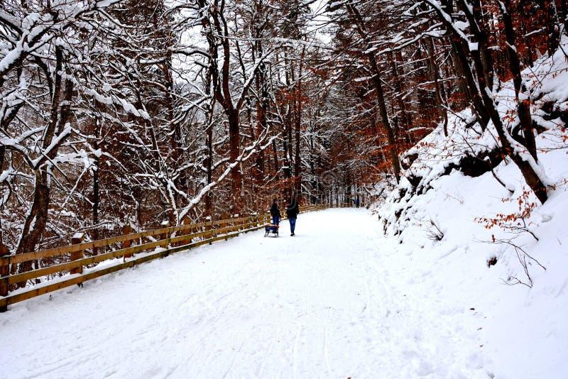 Paysage de la route à l'hiver et à la station touristique Poiana Brasov, une ville situé en Transylvanie, Roumanie photo stock