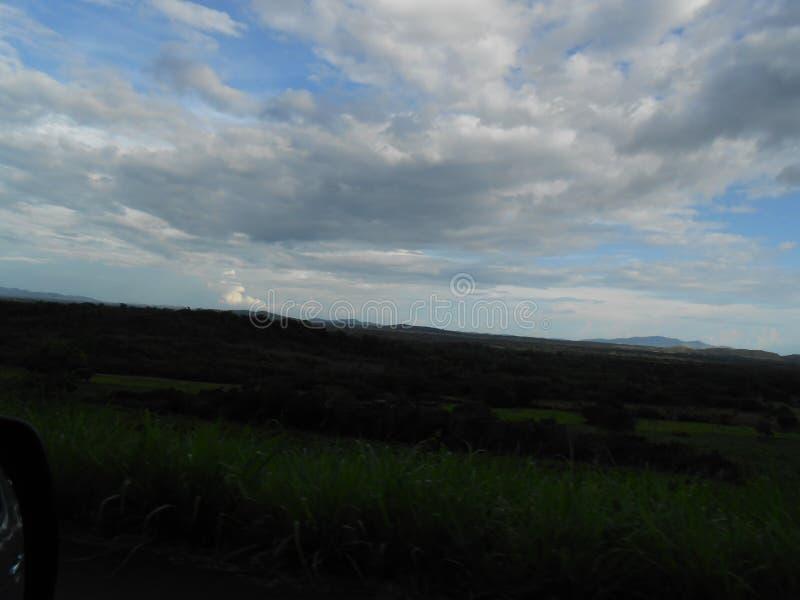Paysage de la savane situé dans le Venezuela du sud dans mamie de La Sabana Amazonas avec le ciel nuageux photo stock