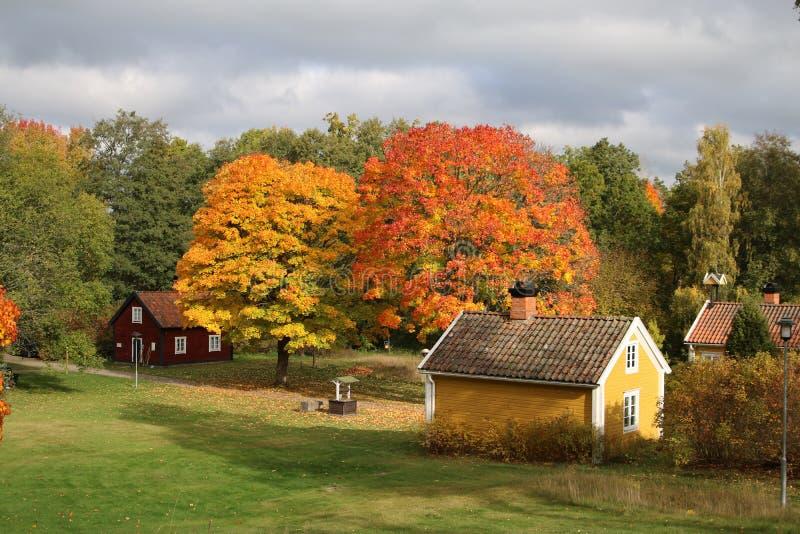 Paysage de la Suède à partir de dessus d'arbre de nature de colline pendant l'automne photo stock