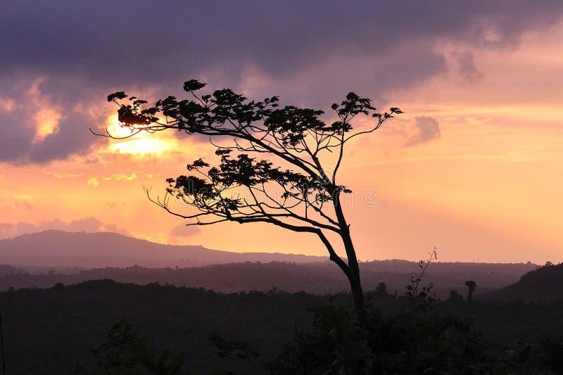Paysage de la Thaïlande, ciel de crépuscule photos libres de droits