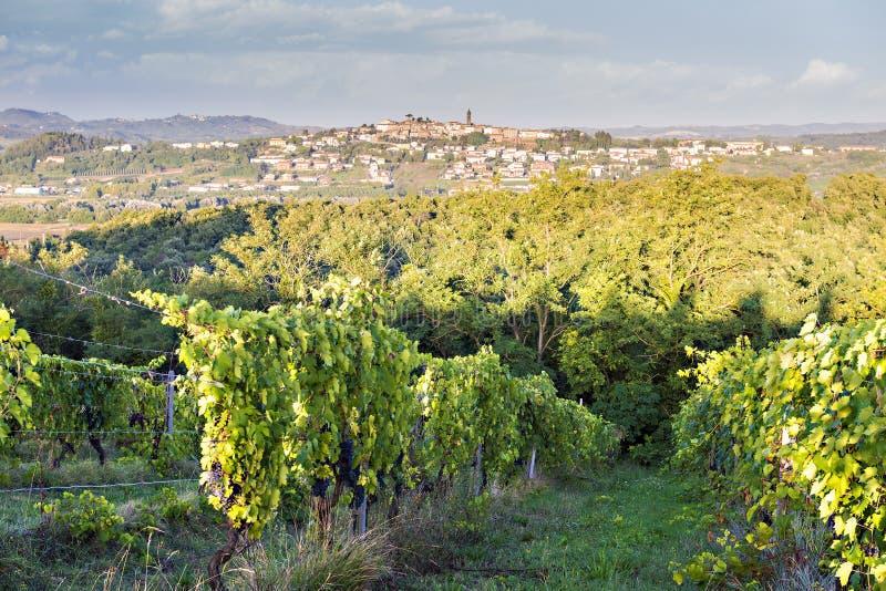 Paysage de la Toscane photos stock