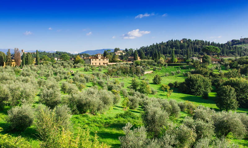 Paysage de la Toscane, Florence photographie stock libre de droits