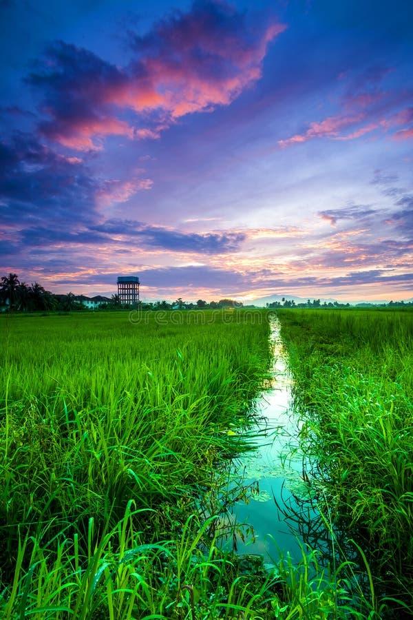 Paysage de lever de soleil photos libres de droits