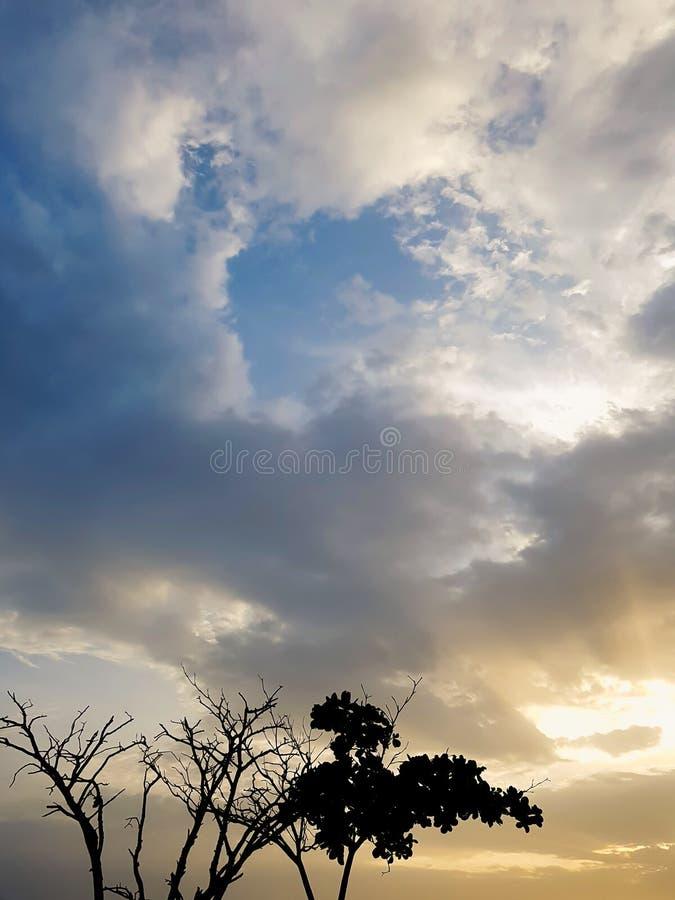 Paysage de lever de soleil pendant le matin, avec des silhouettes d'arbre Ciel bleu d'aube avec les nuages épais photos stock