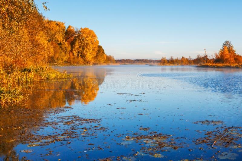 paysage de matin au-dessus de la rivière d'automne photographie stock