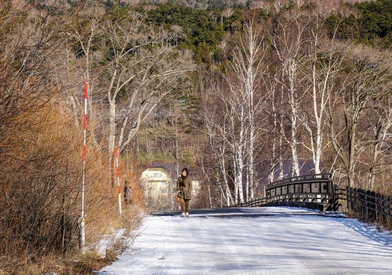Paysage de montagne à Nikko, Japon image stock