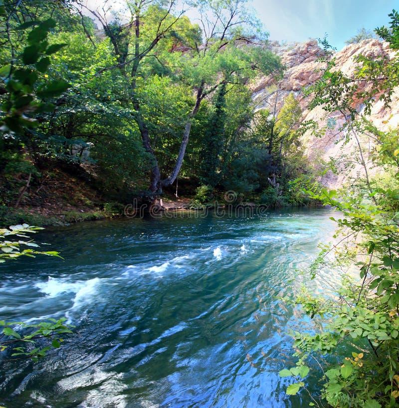 Paysage de montagne avec la rivière rugueuse dans la forêt dans le jour ensoleillé crimea images libres de droits