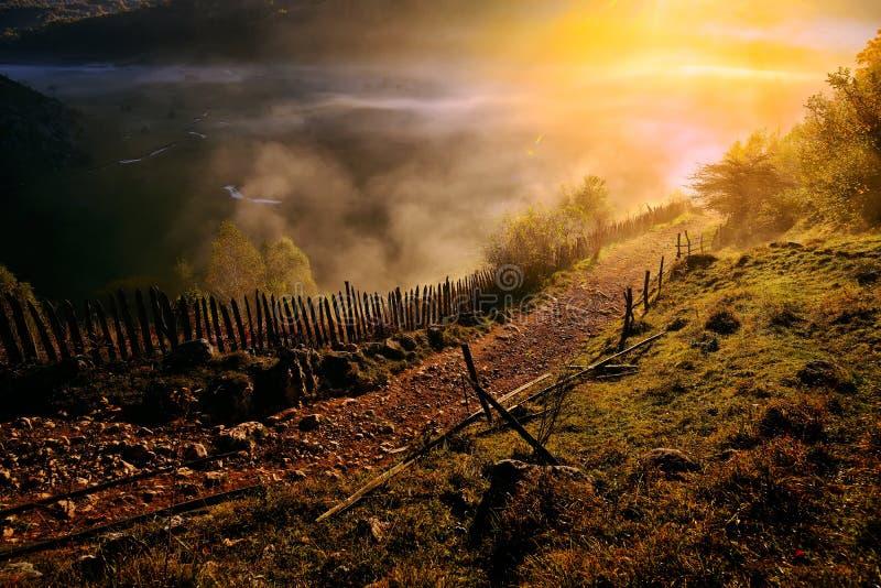 Download Paysage De Montagne Avec Le Brouillard De Matin D'automne Au Lever De Soleil Image stock - Image du saison, rural: 56480595