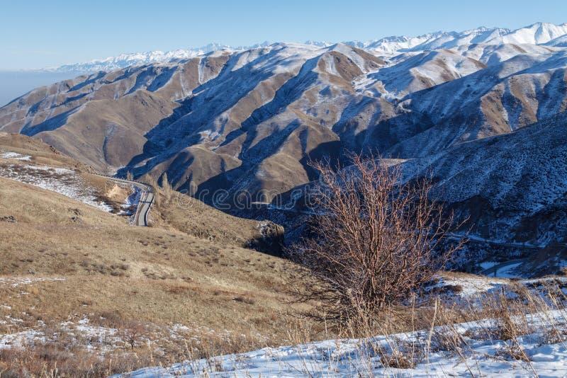 Paysage de montagne d'hiver avec la route serpentine photo libre de droits