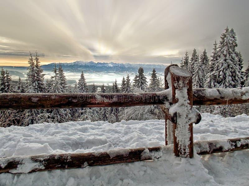 Paysage de montagne d'hiver de Pologne photographie stock libre de droits