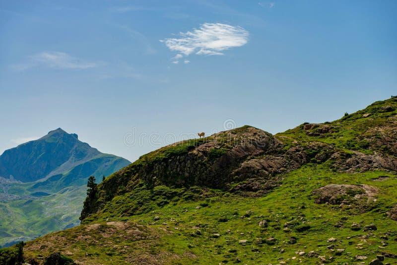 Paysage de montagne dans les Pyrénées français photographie stock