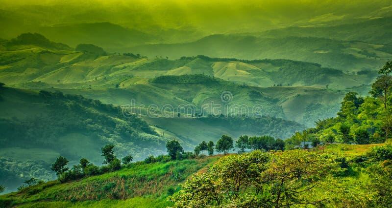Paysage de montagne de couche, Chiang Rai, Thaïlande photos libres de droits
