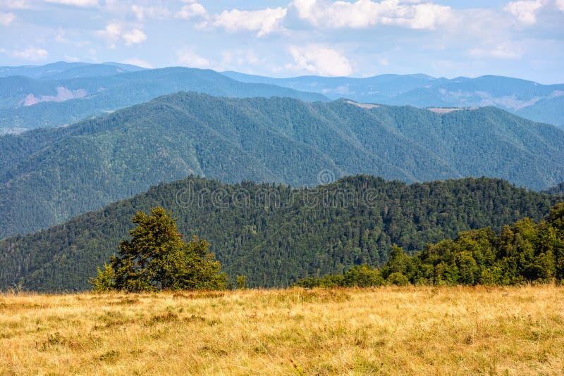 Download Paysage De Montagne De Fin D'été Image stock - Image du intervalle, herbe: 77154439