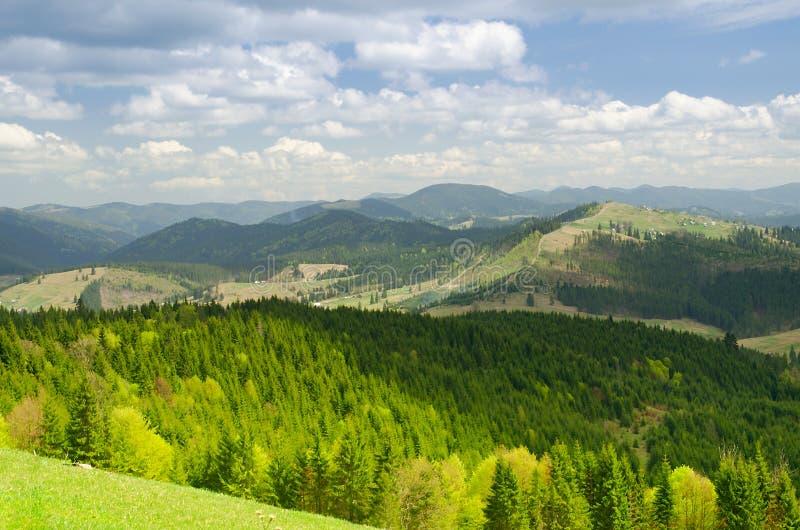 Paysage de montagne de forêt Carpathien, Ukraine photos stock