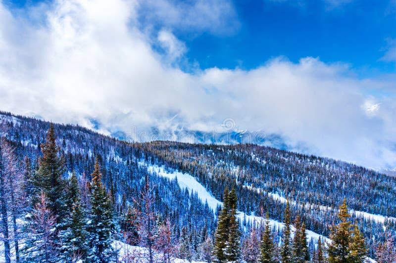 Paysage de montagne de Milou du Canadien les Rocheuses en hiver images stock